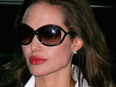 Angelina Jolie Tom Ford Style Sunglasses